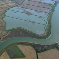 Unique designs for a major coastal lagoon system on Wallasea Island have been approved Image