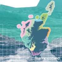 In summary - 3 Year Review of Scotland's National Marine Plan Image