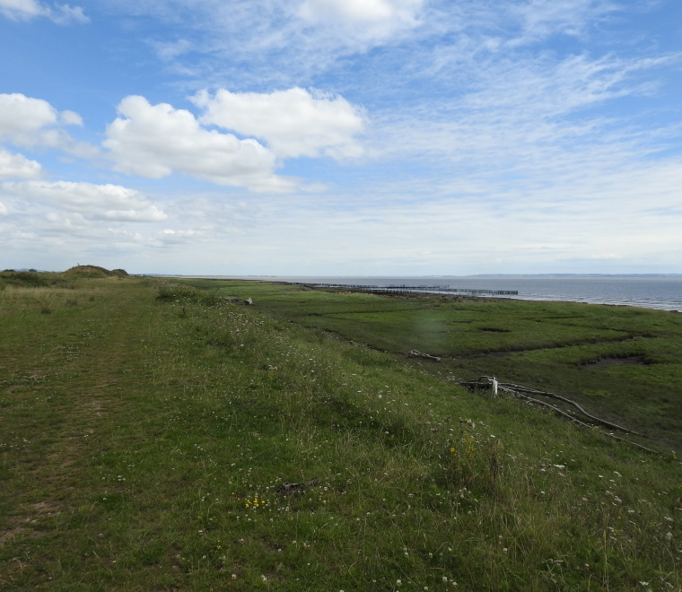 A photo of a view towards polders from West Outfall, Rumney